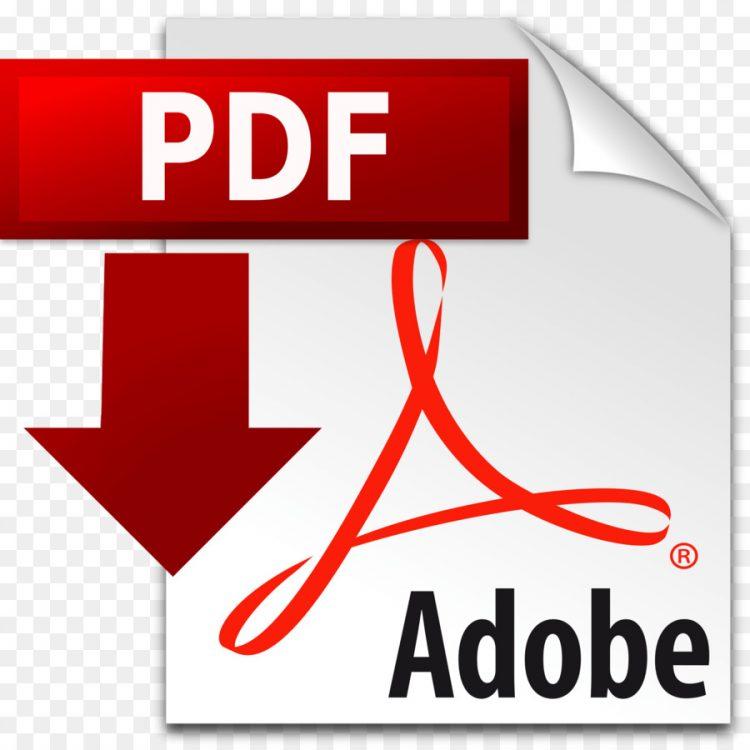 Free PDF - 5 steps to online success