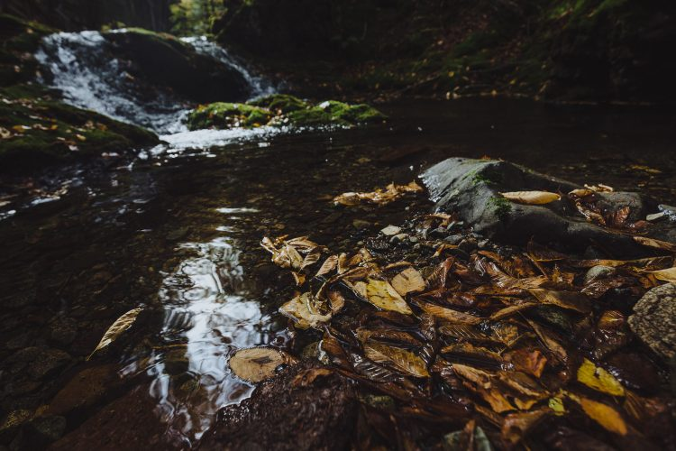 outdoors photographer